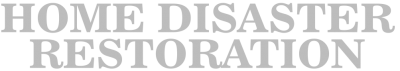 Home-Disaster-text-logo-white.png